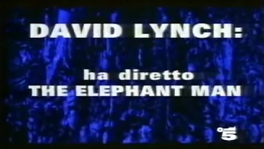 Canale5 - Twin Peaks EXTRA TV Promo Canale5 1991 ITA WS